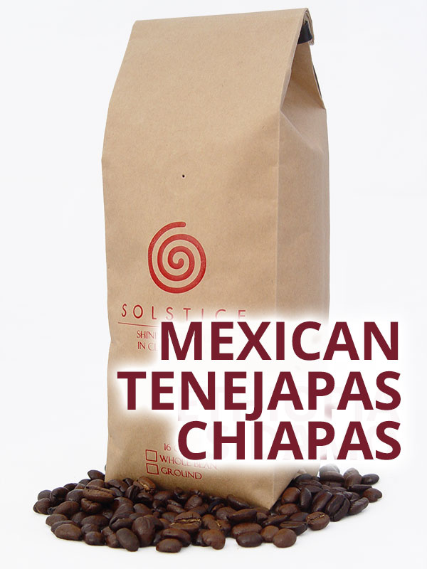 mexican tenejapas chiapas